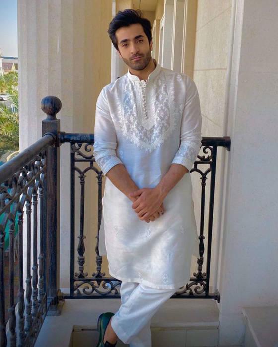 Picture of Sheheryar Munawar